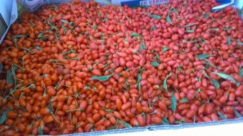 Goji berry taze meyve
